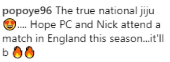 People call Nick Jonas national jiju as he supports Indian cricket team.