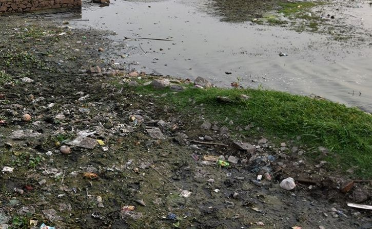 Villagers Strive To Revive Dying Nalluralli Lake Near Whitefield