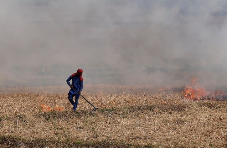 Crop Burning