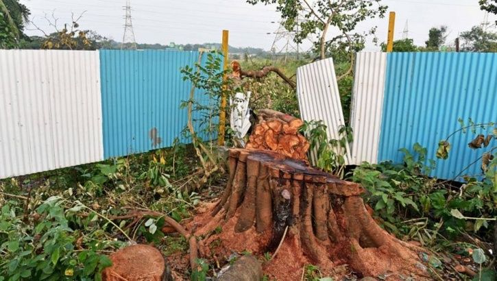 Uttar Pradesh's Yogi Government To Cut Down 64,000 Trees For The Defence Expo