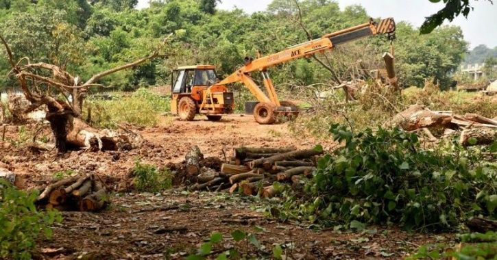 Uttar Pradesh's Yogi Government To Cut Down 64,000 Trees For The Defence Expo in Lucknow