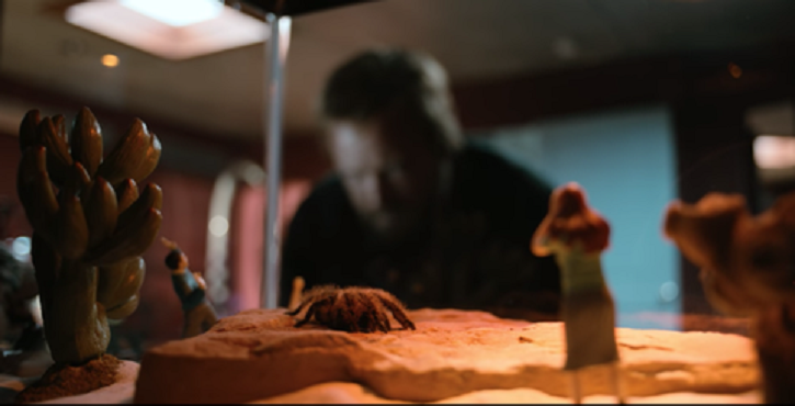 tarantula also had a connection with Breaking Bad.