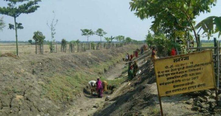 Bihar Village Oasis