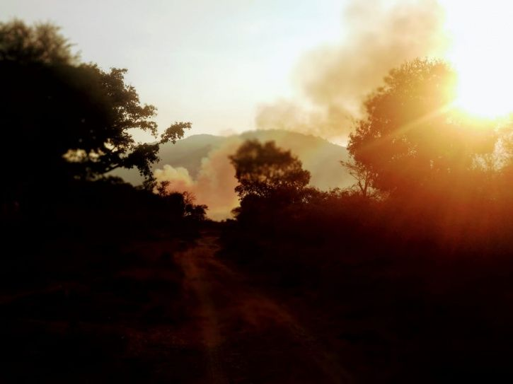 India Forest Fire