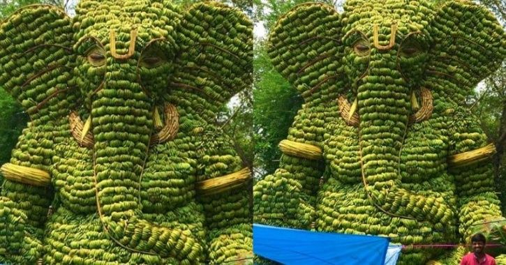 People Are Loving This Ganesha Idol Made Of Bananas That Will Be Distributed Among Poor