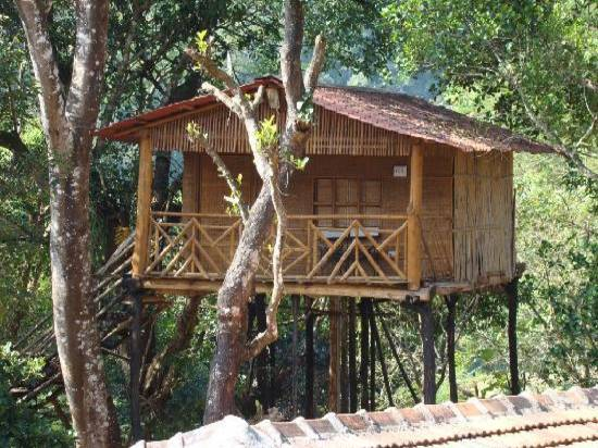 Romantic Tree TOP Houses- Eagle Eye- Chikmagalur