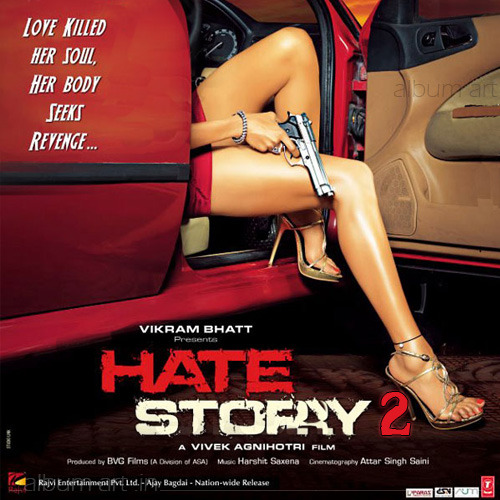 Hate Story 2: Movie Review
