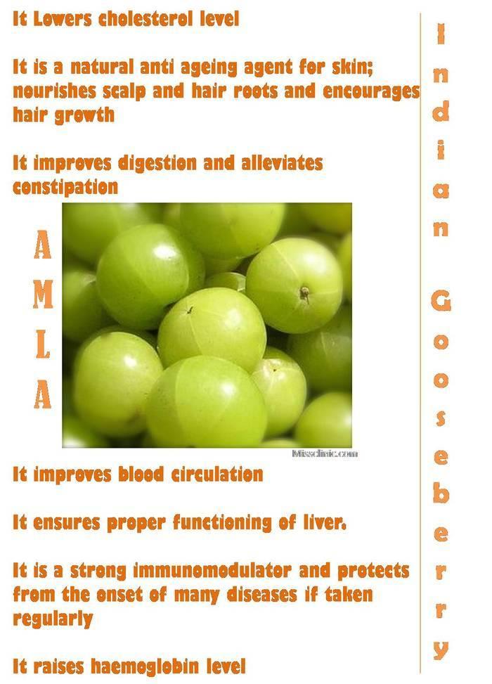 BENEFITS OF AMLA [gooseberry]