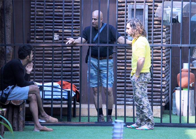 Bigg Boss 8: The Claws Are Out And The Facets, TORN