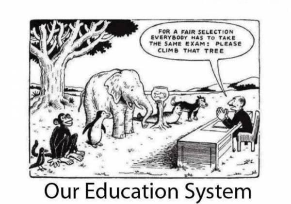 EDUCATION SYSTEM---