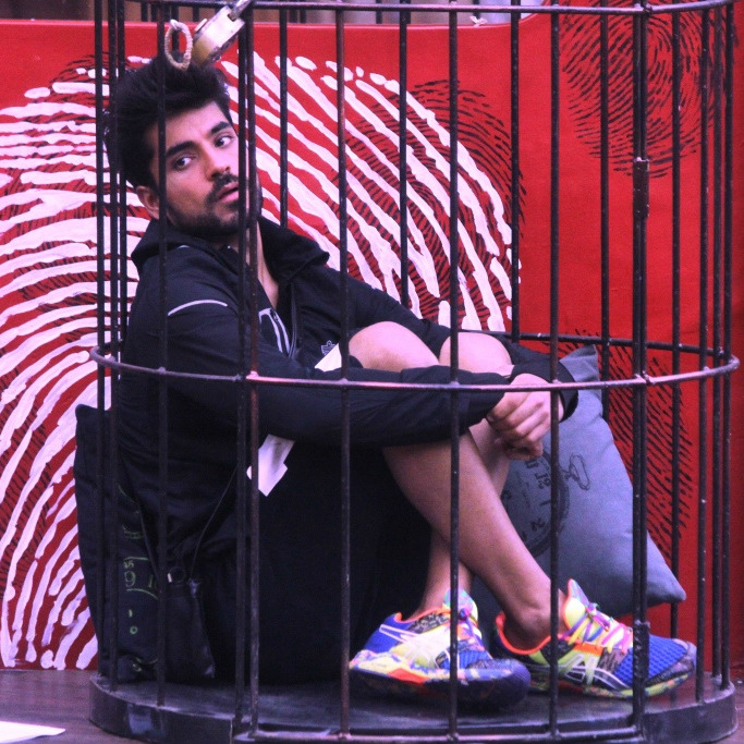 Why Is Gautam Being Targeted On Bigg Boss 8?
