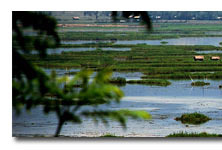 Manipur And Its Scenic Beauty