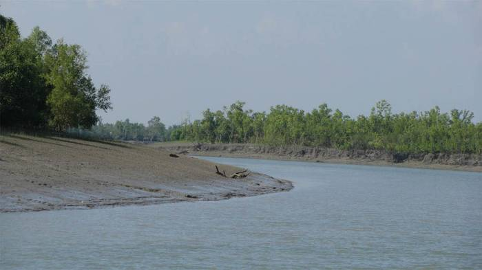 UNESCO Wworld Natural Heritage Sites In India-Sundarbans National Park -