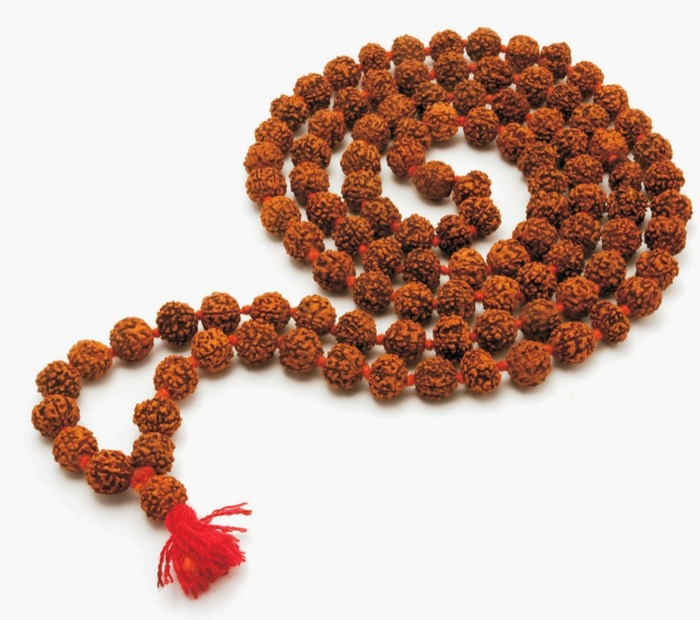 Rudraksha- All You Need To Know