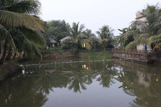 Best Jungle Holiday Destinations In India - Sunderbans, West Bengal