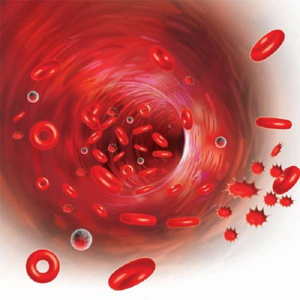 OMG: BLOOD WILL BE MANUFACTURED IN FACTORIES BY 2017