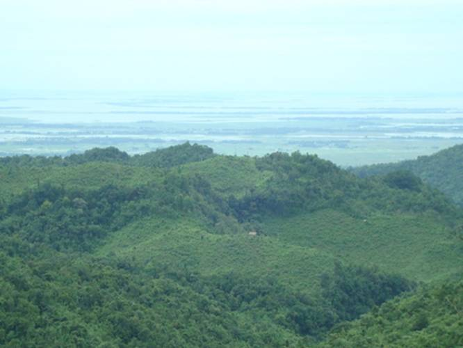 Beautiful Places To Visit In India - Balpakram Forest