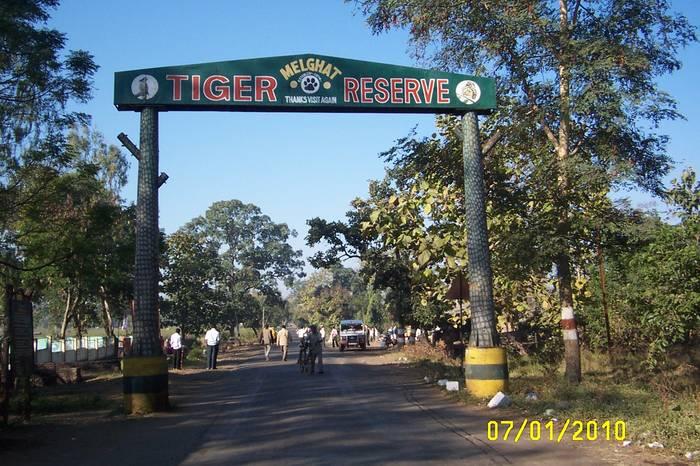 Melghat Tiger Reserve - Worth Visiting
