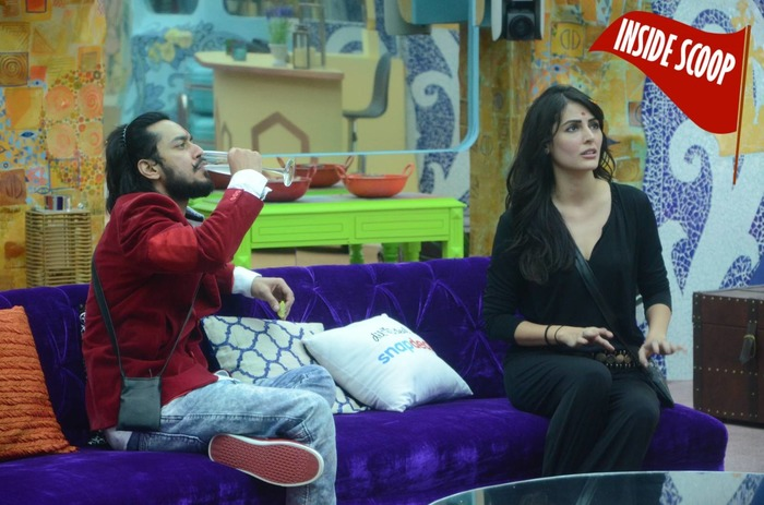 Bigg Boss 9: Know Which 2 Ex-contestants Will Make Life Tough For The Housemates