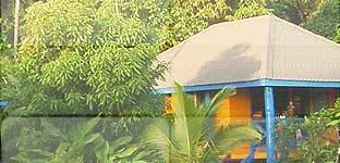 Jungle Resorts Of India - GL's Kaziranga Resort