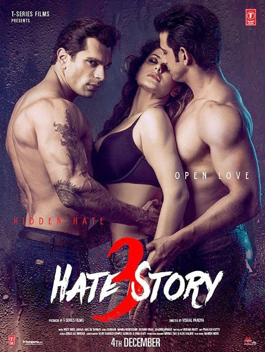 OMG: Did Salman Khan Girls Just Do Those Sex Scenes For Hate Story 3
