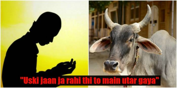 Muslim Man Killed For Consuming Beef, And Another One Jumps In To The Well To Save A Cow
