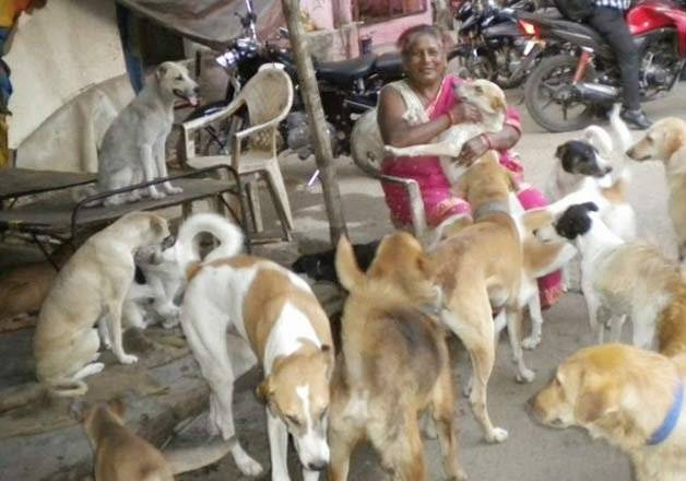 A Ragpicker Who Is Also A Mother To 350 Stray Dogs