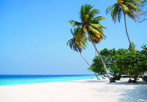 Oblivious Beaches Of India Worth Visiting - Marari Beach, Kerala