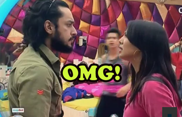 Bigg Boss 9: Rochelle Rao And Rishabh Sinha Are Out Of The House!
