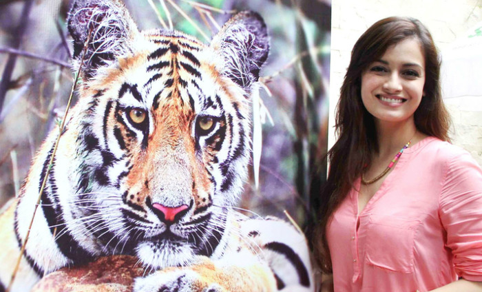 Dia Mirza Directs Film On Tigers, Nature Conservation