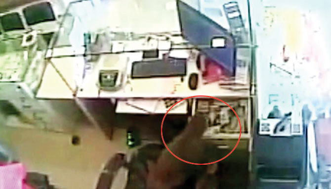 LOL: Monkey Steals Rs 10,000 From A Jewellery Shop In Andhra Pradesh!
