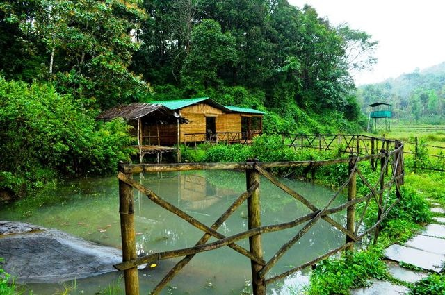 Off-Beat Stays For A Unique Travel Experience - Jungle Retreat Wayanad