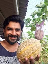 R Madhavan Organic Farm