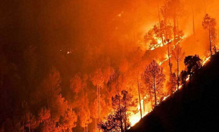 Raging Uttarakhand Forest Fire Can Melt Glaciers Faster, Say Experts