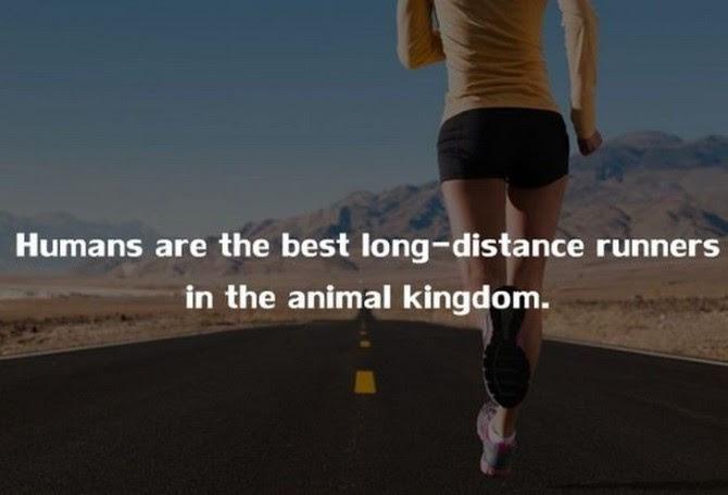 Increadible Human Body Fact