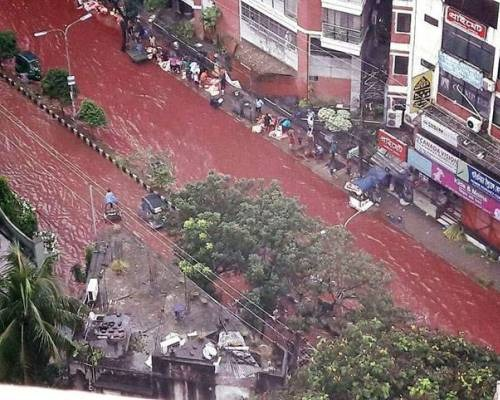 Dhaka Celebrated Red Eid-al Adha And There's Nothing Happy About It, Here's Why