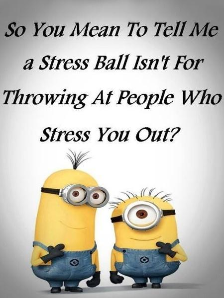 Funny Minion Memes Diet Amp Fitness