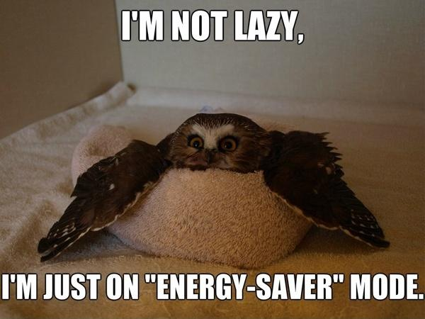 Funny As Memes: Funny Laziness Memes